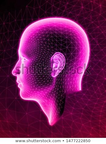 Röntgen fül anatómia szív test egészség Stock fotó © teerawit
