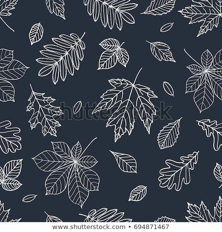 Maple Leaf черный доске вектора осень текстуры Сток-фото © saicle