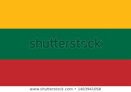 Lithuania flag on shirt Stock photo © fuzzbones0
