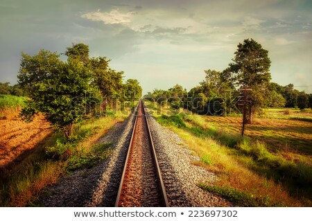railway track crossing rural landscape travel concept stock photo © denisgo