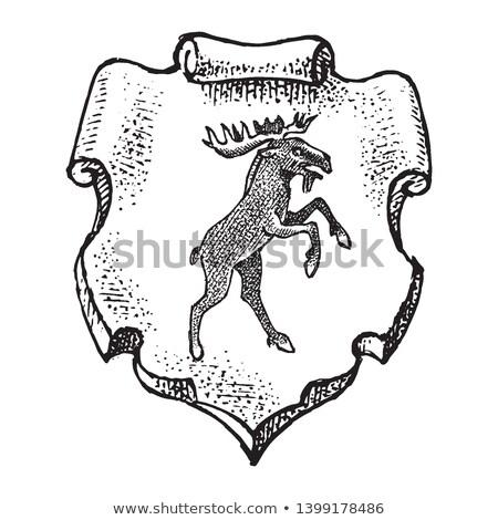 moose coat of arms vintage engraving stock photo © morphart