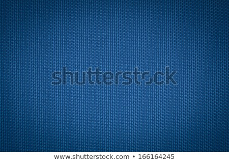 Blue nylon fabric texture  Stock photo © grafvision