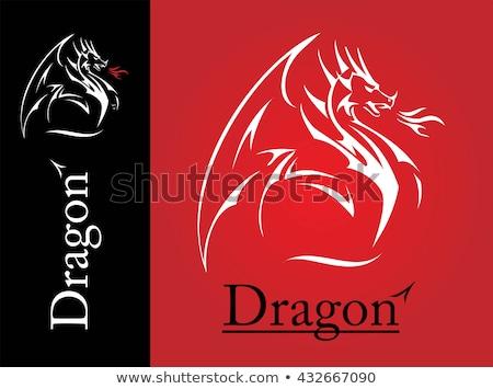 Branco dragão linha arte asa chama Foto stock © HunterX