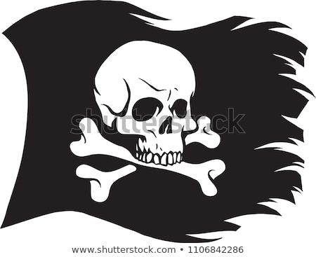 Kalóz zászló koponya fekete szalag izolált Stock fotó © popaukropa
