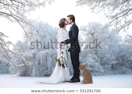 Hochzeit Illustration Familie Liebe Paar Ehe Stock foto © adrenalina