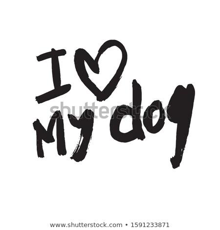 белый пудель собака сердце символ любви Сток-фото © orensila