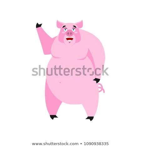 Pig happy Emoji. piggy merry emotion on white background. Farm a Stock photo © popaukropa