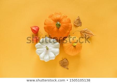 assorted autumn vegetables stock photo © m-studio
