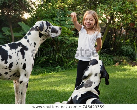 girl holding biscuit for dogs stock photo © is2
