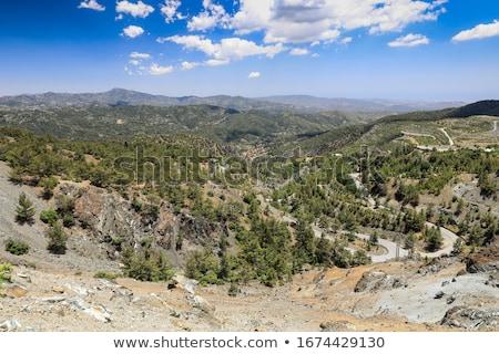 Zwarte pine bergen Cyprus groeiend landschap Stockfoto © Mps197