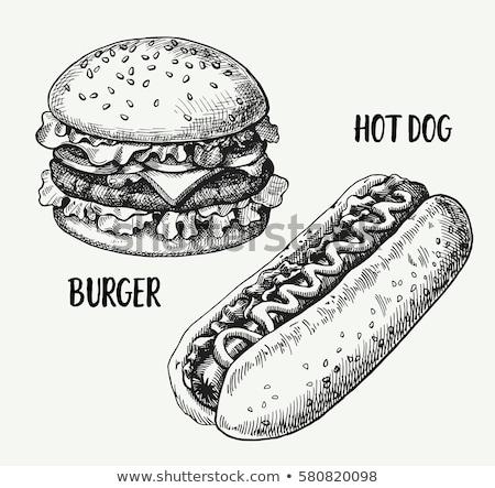 Hotdog kézzel rajzolt rajz ikon skicc firka Stock fotó © RAStudio