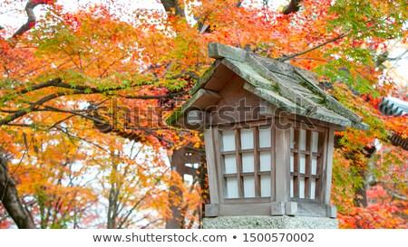 Lâmpada templo quioto Japão santuário bambu Foto stock © daboost