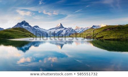 spring landscape with a mountain lake at dusk stock photo © kotenko