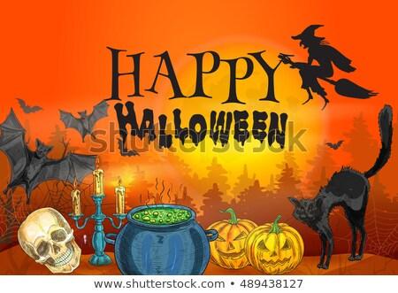 Strega halloween carattere cranio pot Foto d'archivio © popaukropa