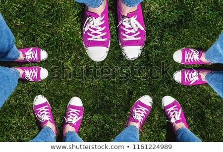 Pernas velho rosa grama verde Foto stock © TanaCh
