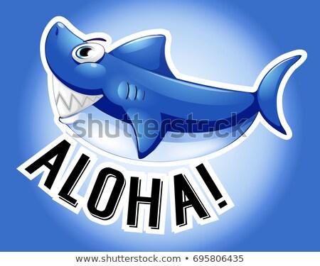 Kék cápa szó aloha illusztráció háttér Stock fotó © colematt
