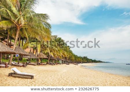 Rotsen zee eiland Vietnam strand Stockfoto © galitskaya
