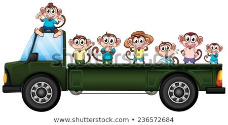 多くの トラック 実例 車 ツリー ストックフォト © colematt