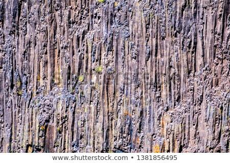 Vertical basalt wall Stock photo © grafvision