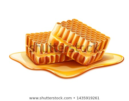 Honeycomb Piece With Fresh Organic Honey Vector Stock photo © pikepicture