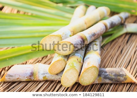 Brown cane sugar in wooden spoon on black background.  Stock photo © marylooo