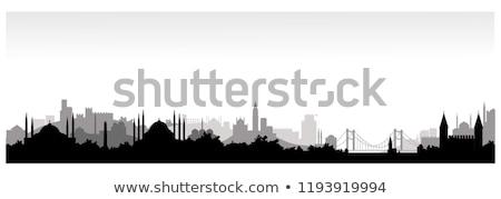Isztambul sziluett épület város híd kastély Stock fotó © cidepix