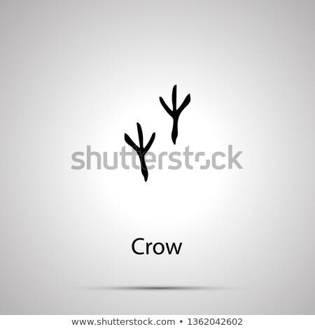 Kraai stappen eenvoudige zwarte silhouet Stockfoto © evgeny89