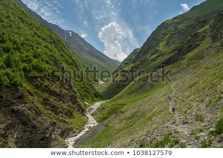 Kaukázus hegyek általános kilátás fa sport Stock fotó © joyr