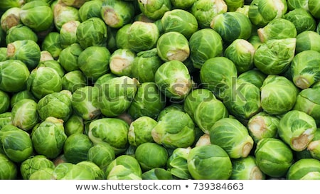 Lots of small green Brussel sprout vegetables. Stock photo © latent