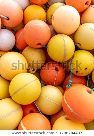 Fishing float Stock photo © Stocksnapper