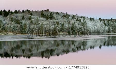 морозный Восход утра небольшой озеро центральный Сток-фото © alexeys