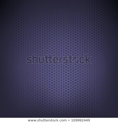 Koolstofvezel textuur nieuwe technologie eps vector Stockfoto © beholdereye