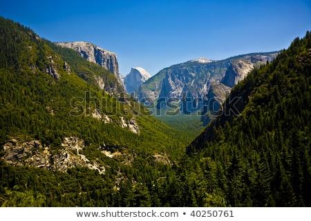 Vallei yosemite park entree beroemd Stockfoto © meinzahn