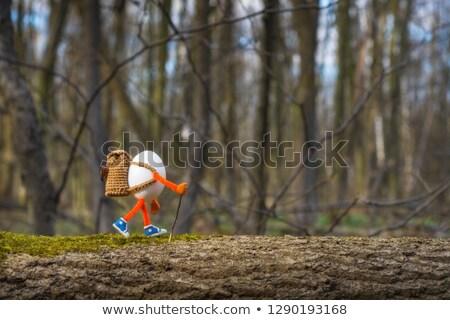 Walking On Eggs Stock photo © Lightsource