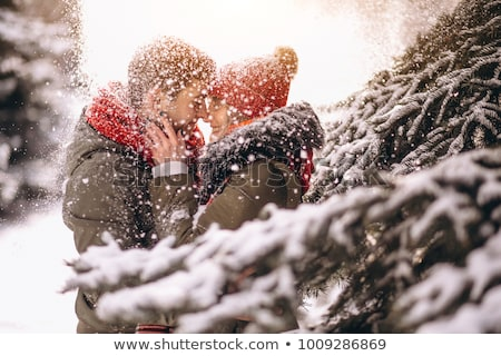 Atraente inverno casal jovem mulher amor Foto stock © kokimk