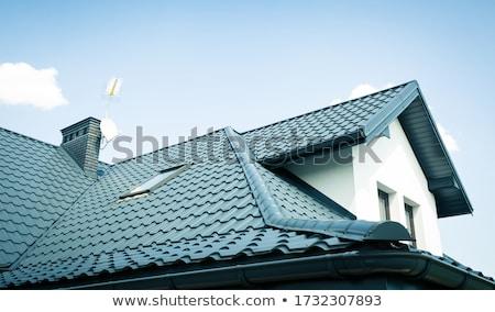 dak · Windows · schoorsteen · betegelde · textuur · hout - stockfoto © bubutu