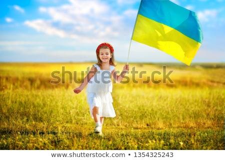 Simge Ukrayna harita beyaz dünya siluet Stok fotoğraf © mayboro1964