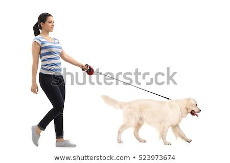 női · lábak · sétál · nyár · park · közelkép - stock fotó © hasloo