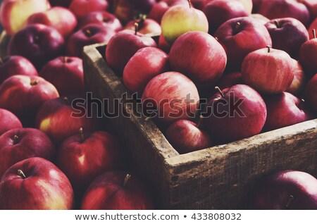old wooden box full of apples stock photo © saransk