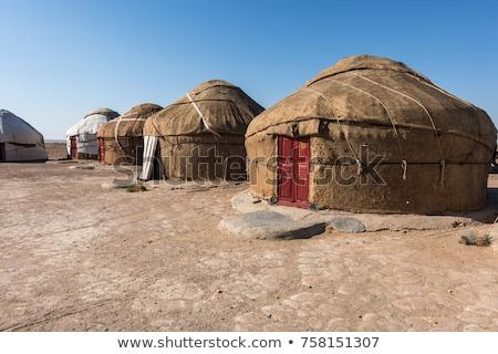 kamp · park · Moğolistan · yeşil · hayvanlar - stok fotoğraf © mikko