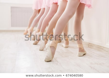 professionnels · danseur · de · ballet · posant · rose · ballerine · fond - photo stock © master1305