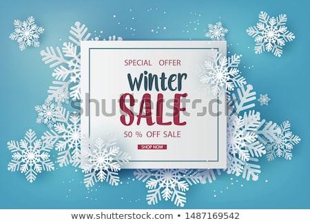 Winter Sale Banner Stock photo © timurock