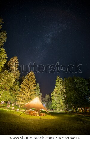 camping shelter at starry night surrounded by trees stock photo © kayco