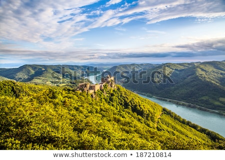 river Danube with green trees in Vienna Stock photo © meinzahn
