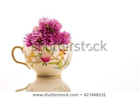 Kırmızı çay fincanı yalıtılmış çay menopoz Stok fotoğraf © marimorena