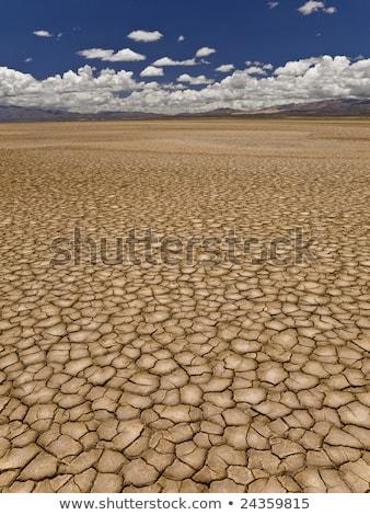 grande · campo · terra · longo · seca - foto stock © rufous