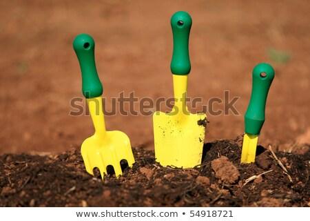 Zdjęcia stock: Trzy · mały · ogród · narzędzia · gleby · schludny