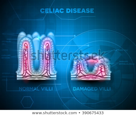 Intestinal villi blue technology background Stock photo © Tefi