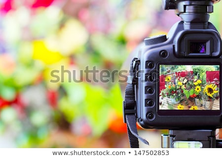 コンパクト · ズーム · デジタルカメラ · 典型的な · 孤立した · 白 - ストックフォト © karandaev