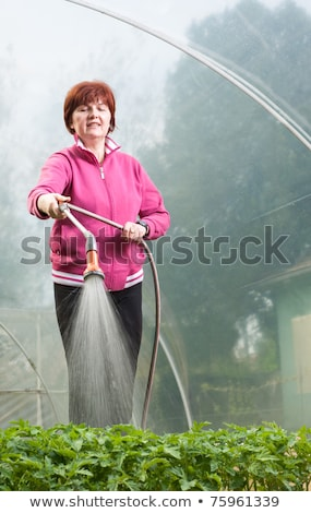 Vertical image of woman running in greenhouse stock photo © deandrobot